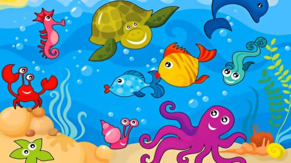 /Files/photogallery/clever-kids-first-puzzles-lets-learn-about-sea-animals-sea-animals-pictures-for-kids-1024x576.jpg